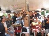 Hen Party / Bachelorette Party - Piggys Party Bus